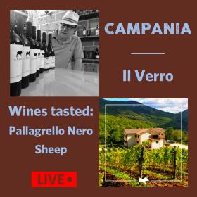 Online wine tasting. Organic wine. Campania. Pallagrello. Coda di Pecora. Il Verro.